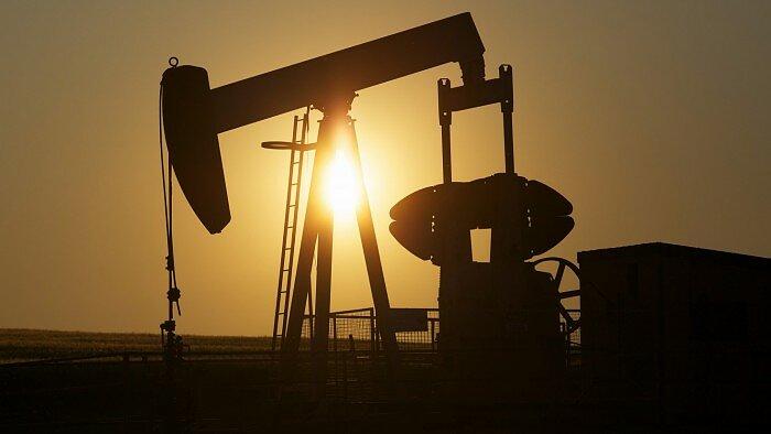 prekybos žaliavine nafta galimybės pasirinkimo sandorių prekyba namų verslu