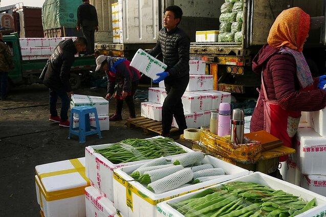 PPO vadovas: pasaulio prekyba susiduria su didžiausia krize nuo 1947 m.