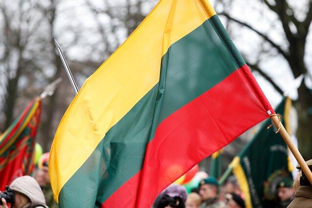 """Vaizdo rezultatas pagal užklausą """"lietuvos vėliava"""""""