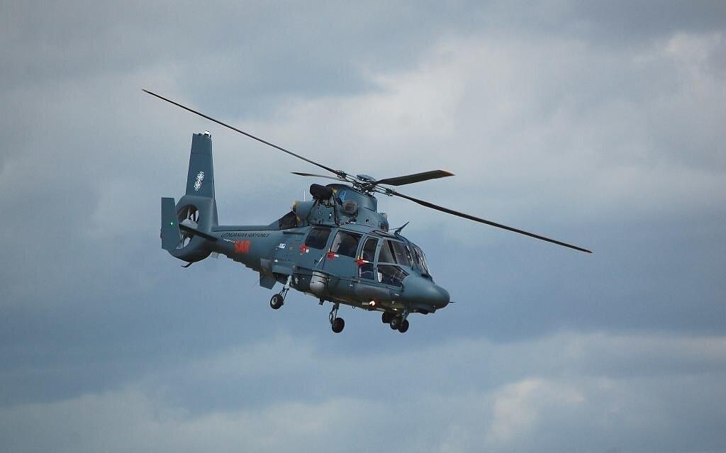 Sraigtasparnis. Asociatyvinė nuotrauka