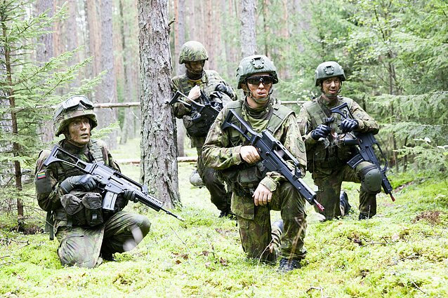 Lithuanian military