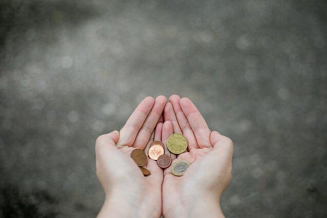 akcijų grąžos nuspėjamumas prekybai ne pinigais)