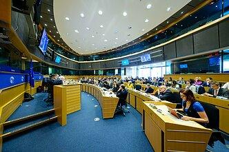 Rytų partnerystei skirta diskusija Europos Parlamente