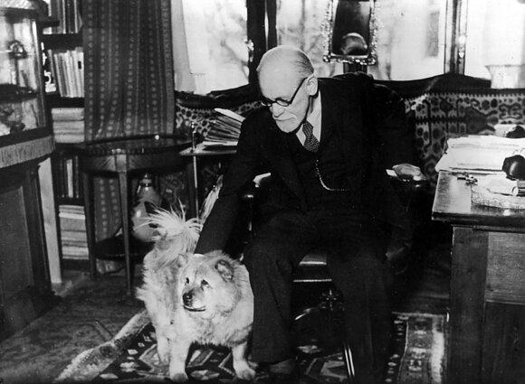 Sigmundas Freudas ir Jofi