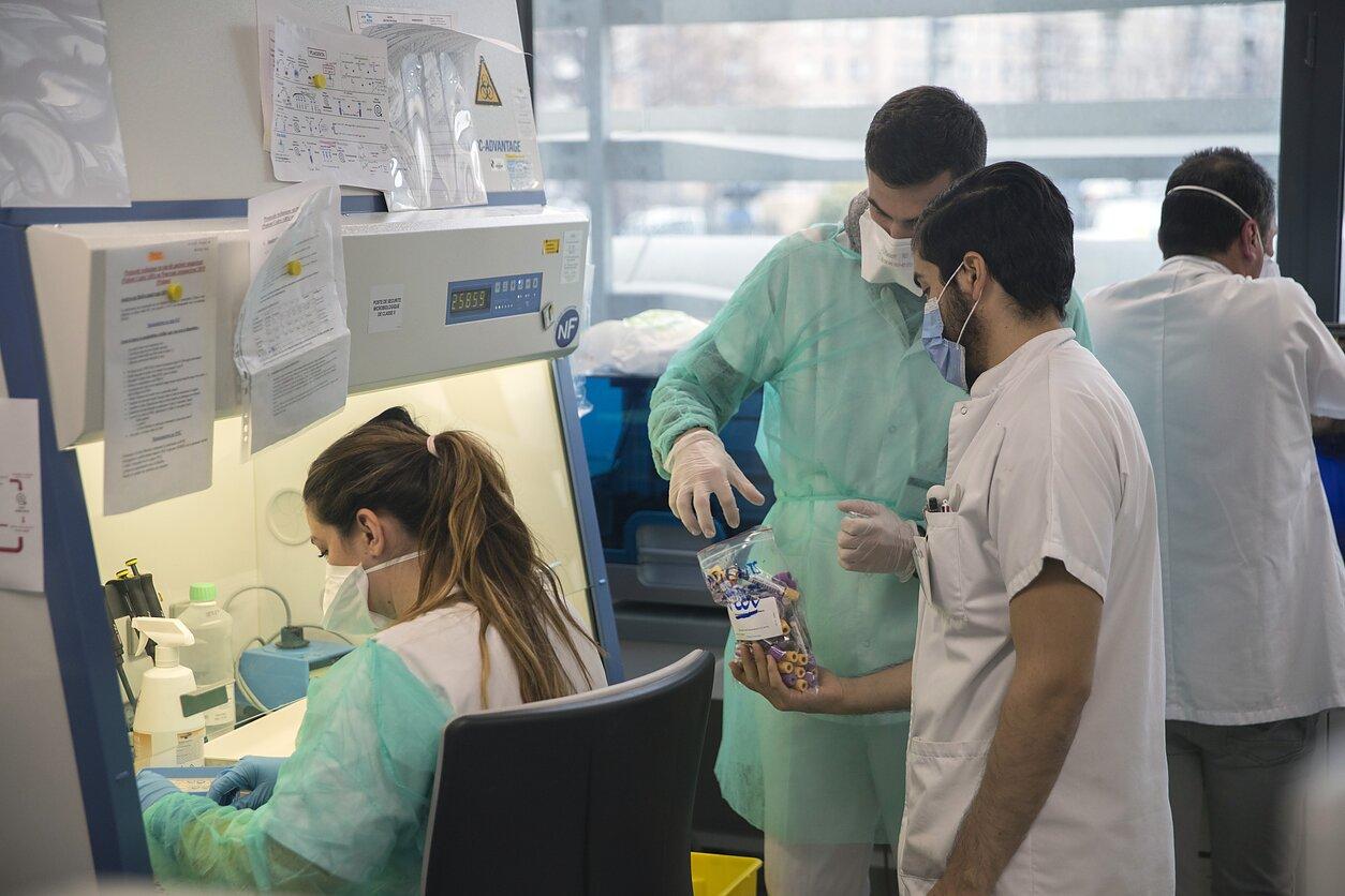 Gazos Ruože patvirtinti du pirmieji užsikrėtimo koronavirusu atvejai | anrestas.lt