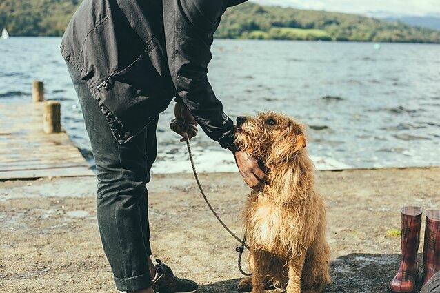 šuo ir šeimininkas